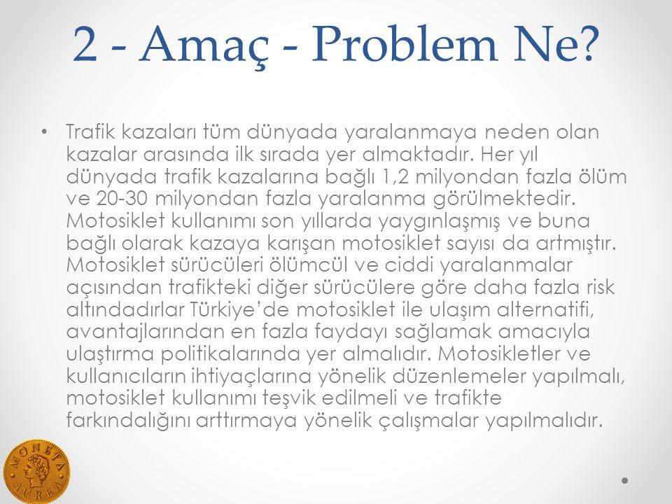 2 - Amaç - Problem Ne.