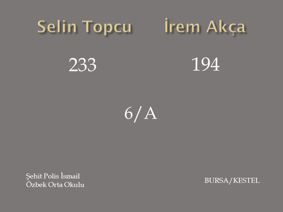 233 194 6/A Şehit Polis İsmail Özbek Orta Okulu BURSA/KESTEL