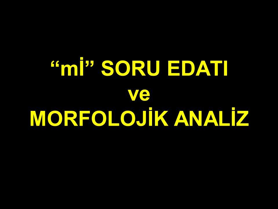"""mİ"" SORU EDATI ve MORFOLOJİK ANALİZ"