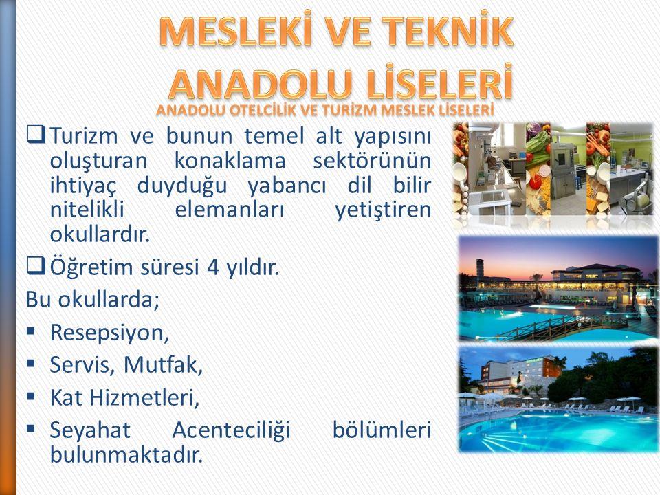  Turizm ve bunun temel alt yapısını oluşturan konaklama sektörünün ihtiyaç duyduğu yabancı dil bilir nitelikli elemanları yetiştiren okullardır.