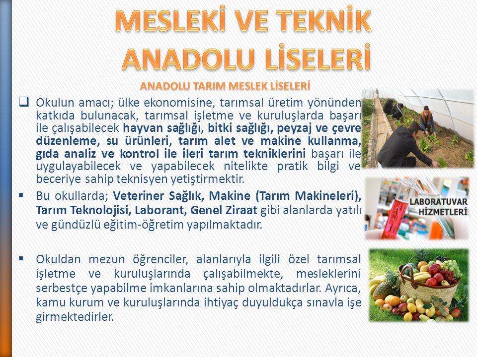  Okulun amacı; ülke ekonomisine, tarımsal üretim yönünden katkıda bulunacak, tarımsal işletme ve kuruluşlarda başarı ile çalışabilecek hayvan sağlığı
