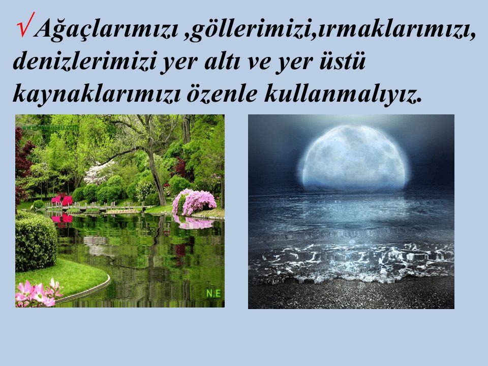√ Ağaçlarımızı,göllerimizi,ırmaklarımızı, denizlerimizi yer altı ve yer üstü kaynaklarımızı özenle kullanmalıyız.