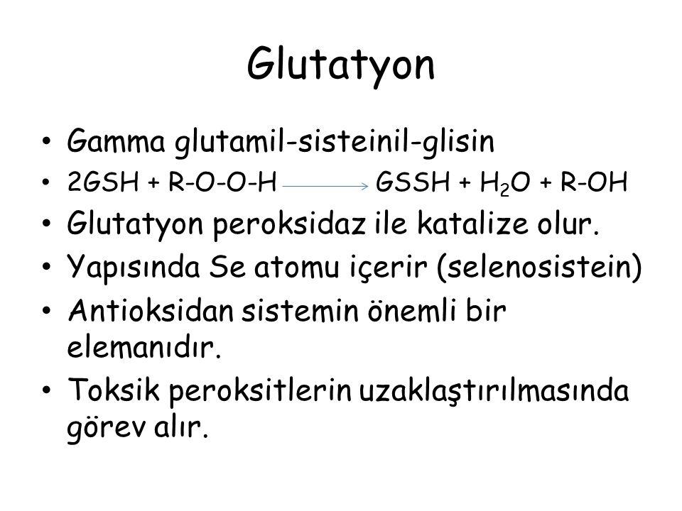 Glutatyon Gamma glutamil-sisteinil-glisin 2GSH + R-O-O-H GSSH + H 2 O + R-OH Glutatyon peroksidaz ile katalize olur. Yapısında Se atomu içerir (seleno