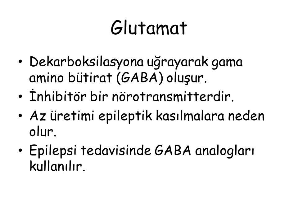Glutamat Dekarboksilasyona uğrayarak gama amino bütirat (GABA) oluşur. İnhibitör bir nörotransmitterdir. Az üretimi epileptik kasılmalara neden olur.