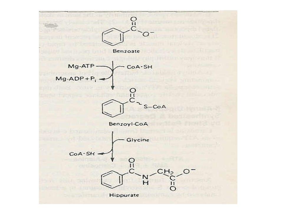 Aminoasitler dekarboksilasyon ile biyolojik aminlere dönüşürler Tirozin katekolaminlerin prekürsörüdür.