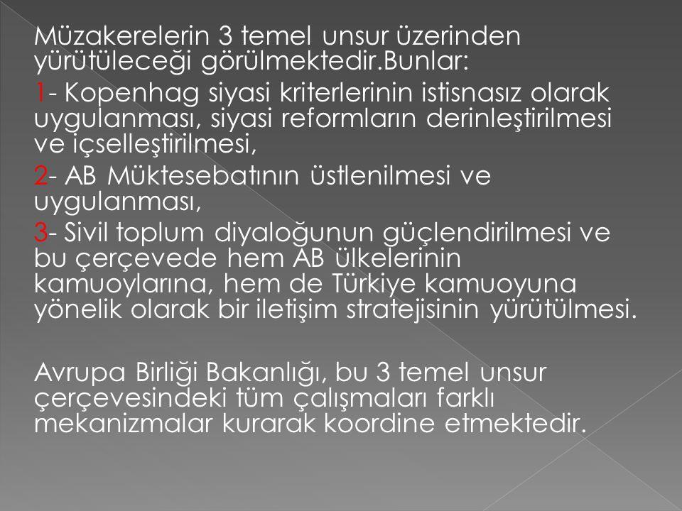 Müzakerelerin 3 temel unsur üzerinden yürütüleceği görülmektedir.Bunlar: 1- Kopenhag siyasi kriterlerinin istisnasız olarak uygulanması, siyasi reformların derinleştirilmesi ve içselleştirilmesi, 2- AB Müktesebatının üstlenilmesi ve uygulanması, 3- Sivil toplum diyaloğunun güçlendirilmesi ve bu çerçevede hem AB ülkelerinin kamuoylarına, hem de Türkiye kamuoyuna yönelik olarak bir iletişim stratejisinin yürütülmesi.