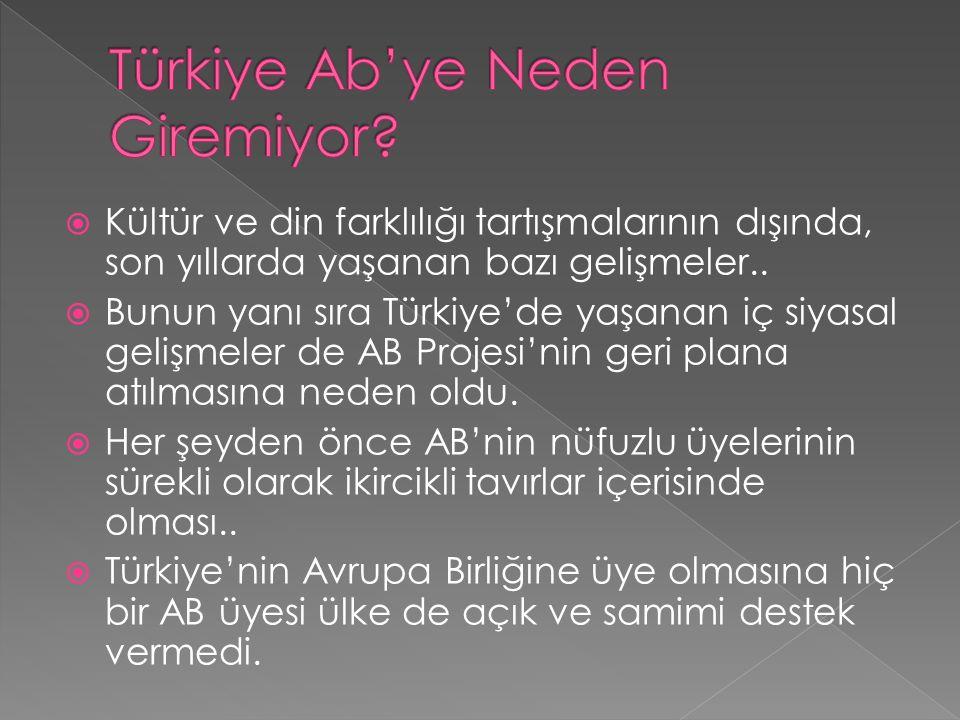  Kültür ve din farklılığı tartışmalarının dışında, son yıllarda yaşanan bazı gelişmeler..  Bunun yanı sıra Türkiye'de yaşanan iç siyasal gelişmeler