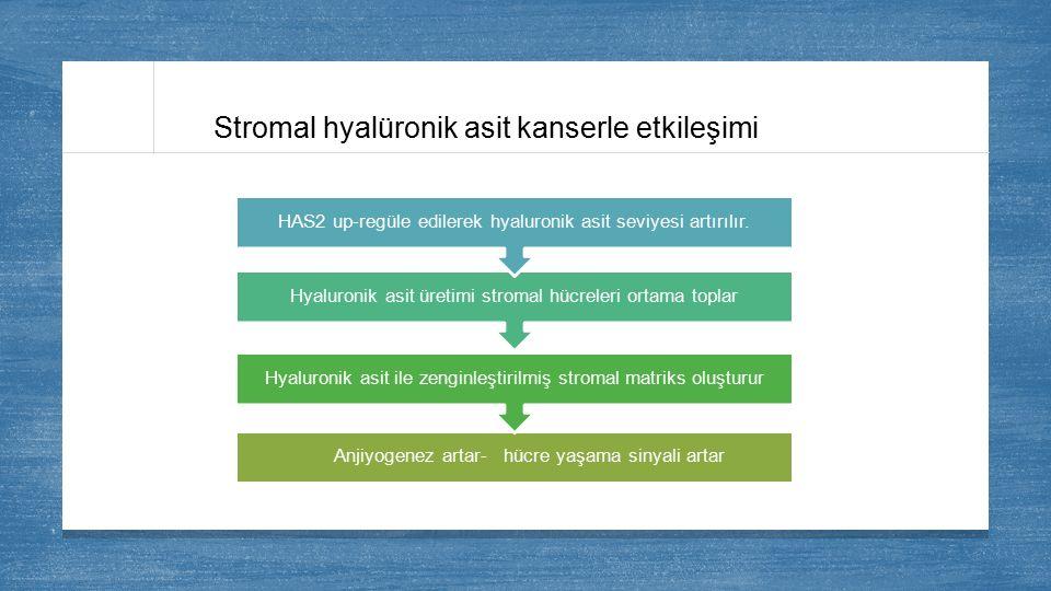 Stromal hyalüronik asit kanserle etkileşimi Anjiyogenez artar- hücre yaşama sinyali artar Hyaluronik asit ile zenginleştirilmiş stromal matriks oluştu