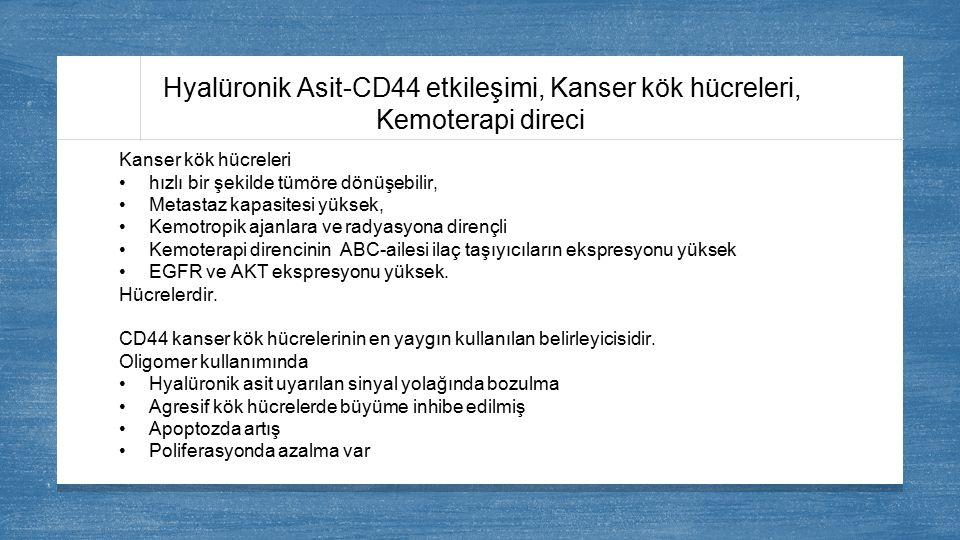 Hyalüronik Asit-CD44 etkileşimi, Kanser kök hücreleri, Kemoterapi direci Kanser kök hücreleri hızlı bir şekilde tümöre dönüşebilir, Metastaz kapasites