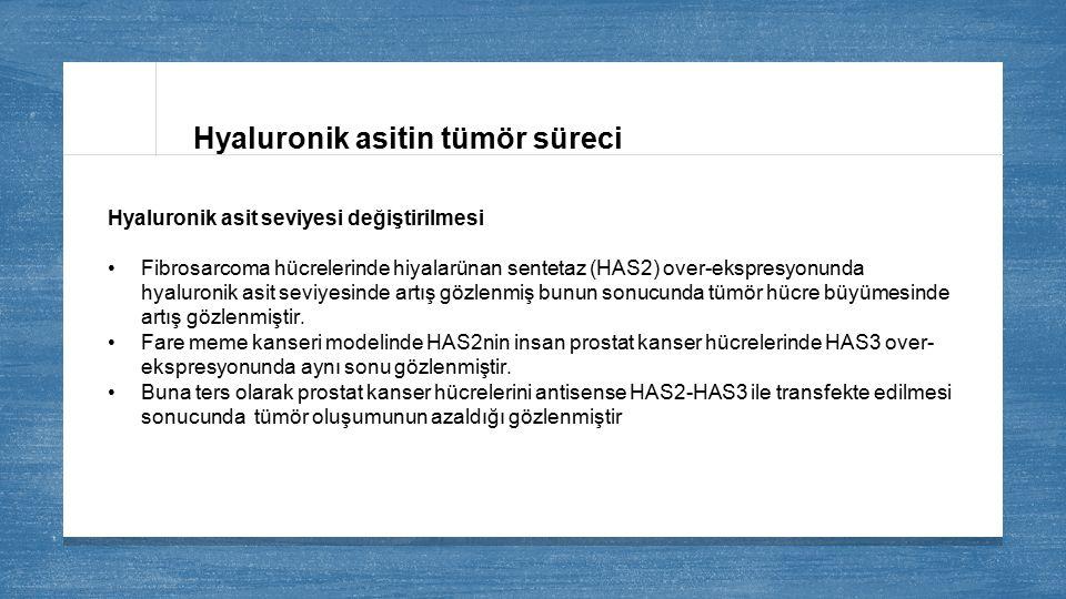 Hyaluronik asitin tümör süreci Hyaluronik asit seviyesi değiştirilmesi Fibrosarcoma hücrelerinde hiyalarünan sentetaz (HAS2) over-ekspresyonunda hyalu