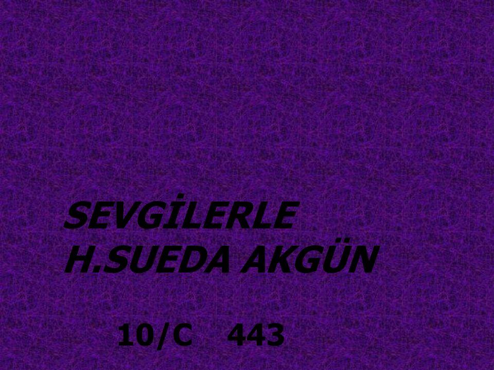 SEVGİLERLE H.SUEDA AKGÜN 10/C 443