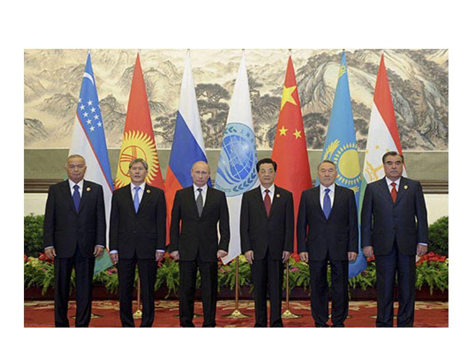 Örgüt'e üye ülkeler arasında serbest ticaret alanı oluşturmak ve ekonomik entegrasyon projesi vardır.