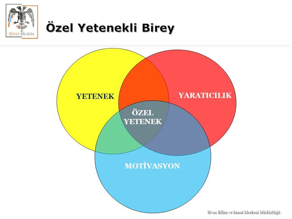 YETENEK YARATICILIK MOTİVASYON ÖZEL YETENEK Sivas Bilim ve Sanat Merkezi Müdürlüğü