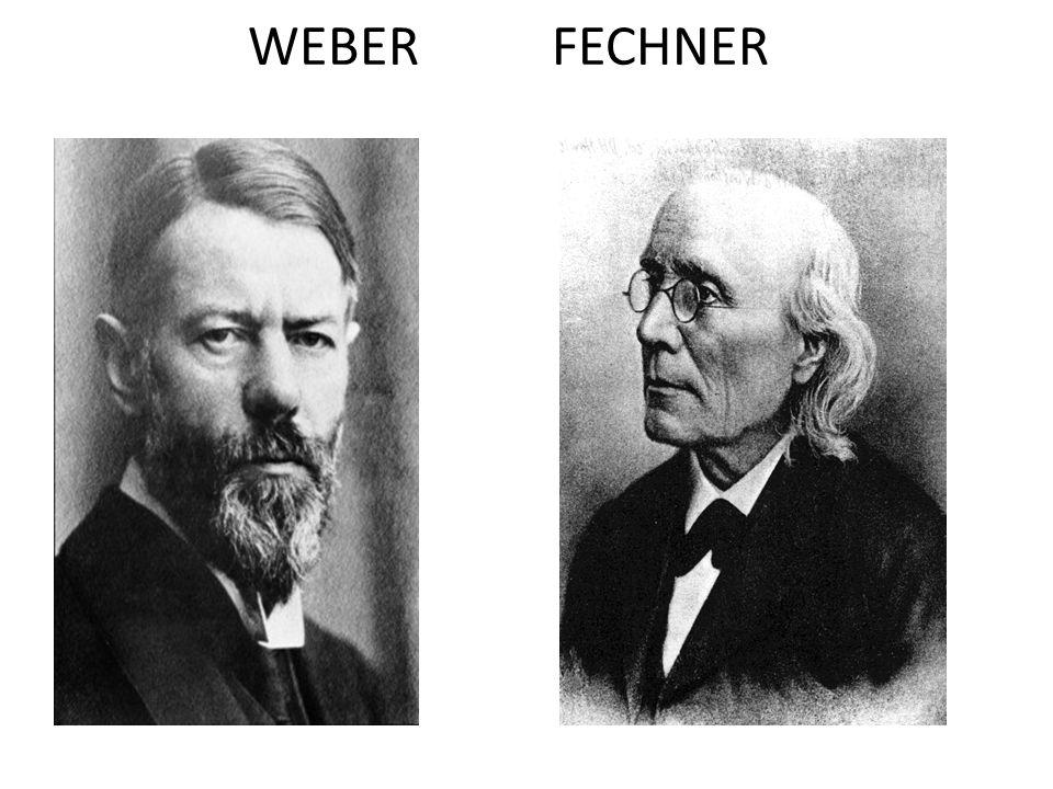 WEBER FECHNER