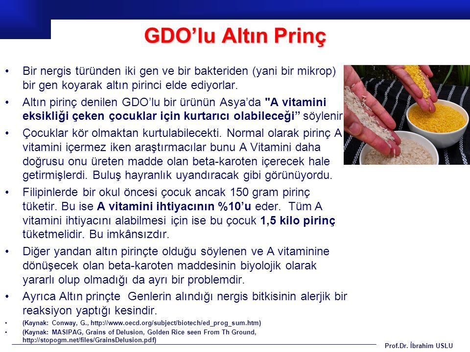 Prof.Dr. İbrahim USLU Bir nergis türünden iki gen ve bir bakteriden (yani bir mikrop) bir gen koyarak altın pirinci elde ediyorlar. Altın pirinç denil