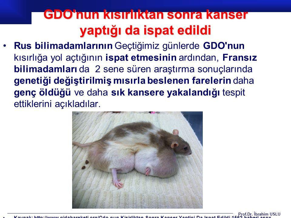 Prof.Dr. İbrahim USLU Rus bilimadamlarının Geçtiğimiz günlerde GDO'nun kısırlığa yol açtığının ispat etmesinin ardından, Fransız bilimadamları da 2 se