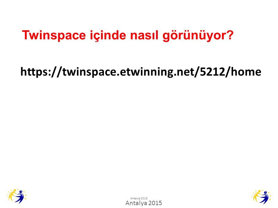 Twinspace içinde nasıl görünüyor.