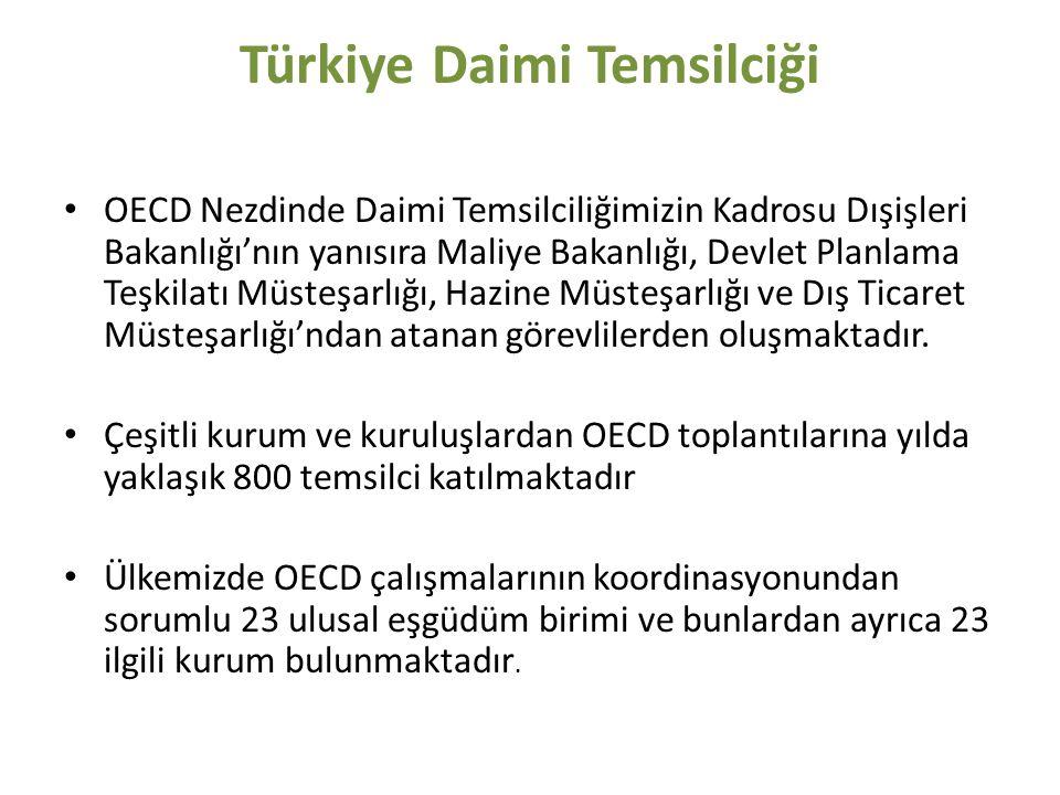Türkiye Daimi Temsilciği OECD Nezdinde Daimi Temsilciliğimizin Kadrosu Dışişleri Bakanlığı'nın yanısıra Maliye Bakanlığı, Devlet Planlama Teşkilatı Müsteşarlığı, Hazine Müsteşarlığı ve Dış Ticaret Müsteşarlığı'ndan atanan görevlilerden oluşmaktadır.
