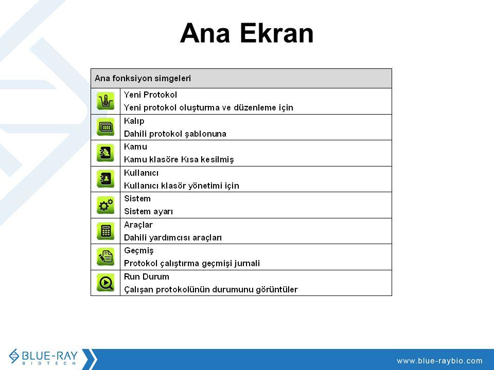 Ana Ekran