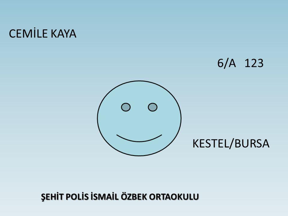 CEMİLE KAYA ŞEHİT POLİS İSMAİL ÖZBEK ORTAOKULU 6/A 123 KESTEL/BURSA