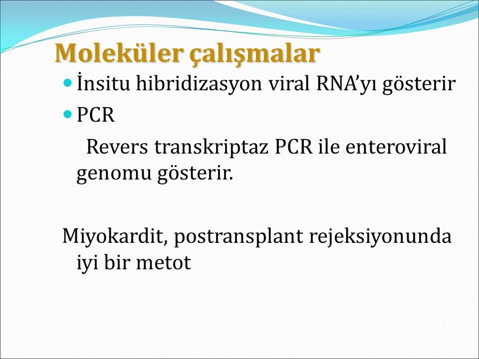 Moleküler çalışmalar Moleküler çalışmalar İnsitu hibridizasyon viral RNA'yı gösterir PCR Revers transkriptaz PCR ile enteroviral genomu gösterir. Miyo
