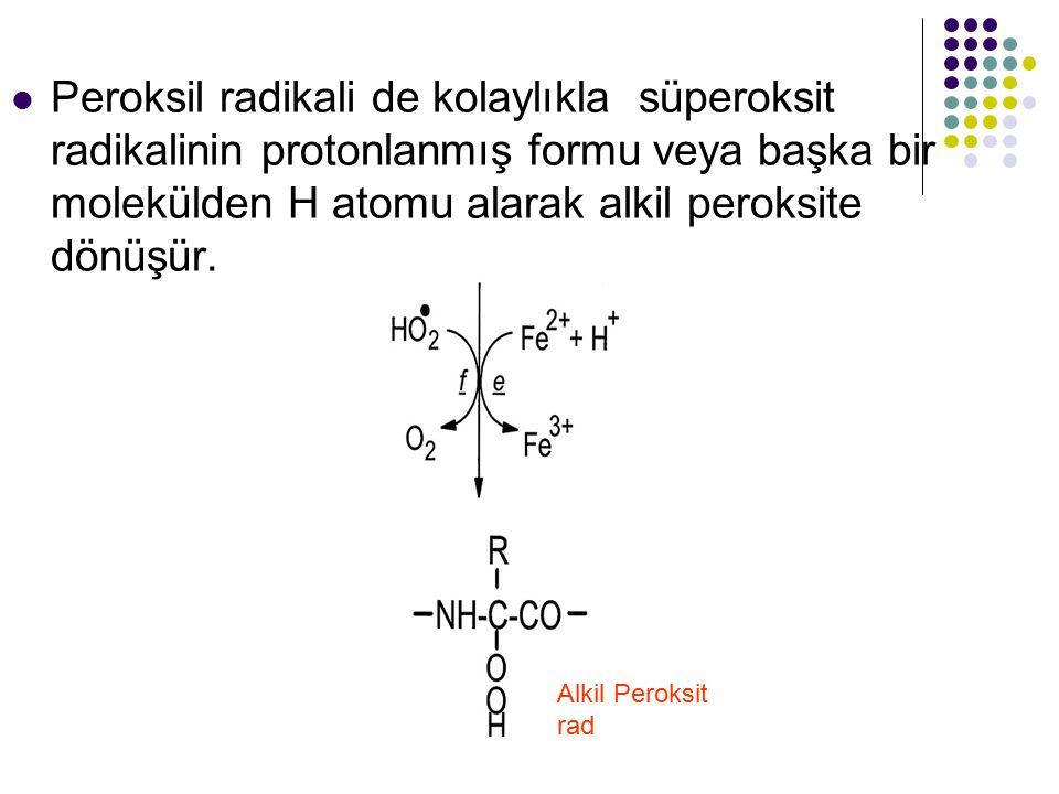 Peroksil radikali de kolaylıkla süperoksit radikalinin protonlanmış formu veya başka bir molekülden H atomu alarak alkil peroksite dönüşür. Alkil Pero