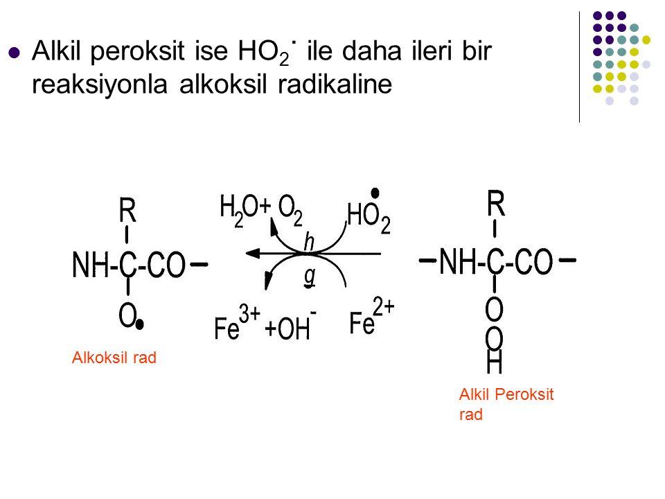 Alkil peroksit ise HO 2 ˙ ile daha ileri bir reaksiyonla alkoksil radikaline Alkil Peroksit rad Alkoksil rad