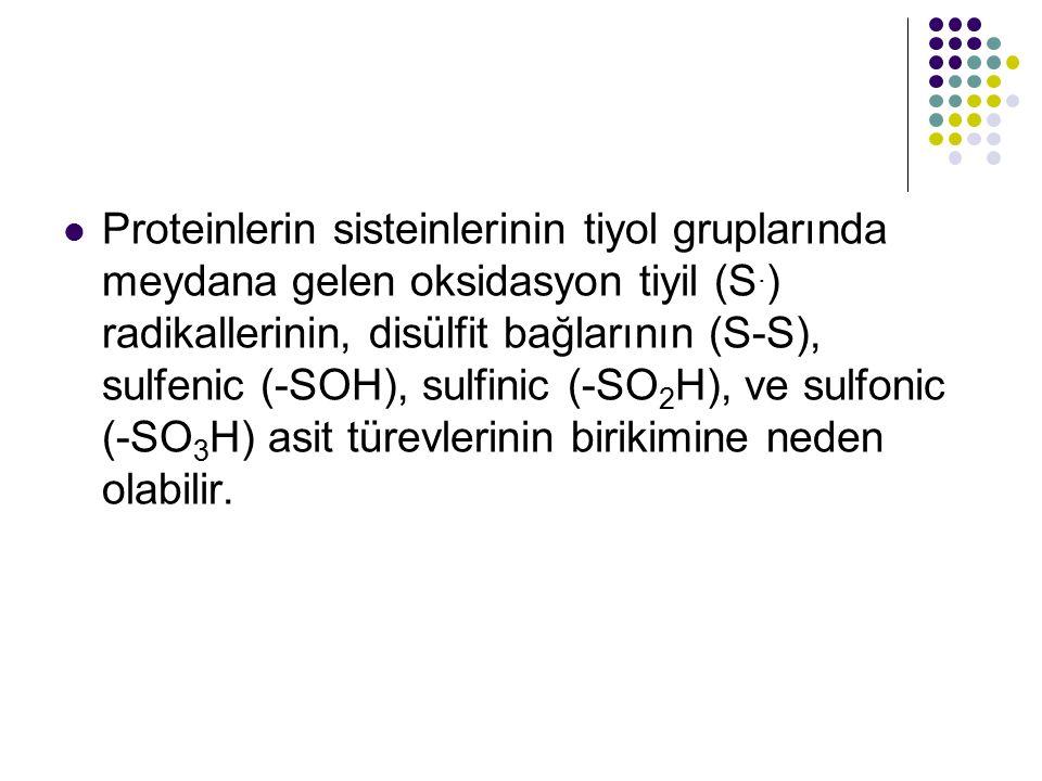 Proteinlerin sisteinlerinin tiyol gruplarında meydana gelen oksidasyon tiyil (S. ) radikallerinin, disülfit bağlarının (S-S), sulfenic (-SOH), sulfini