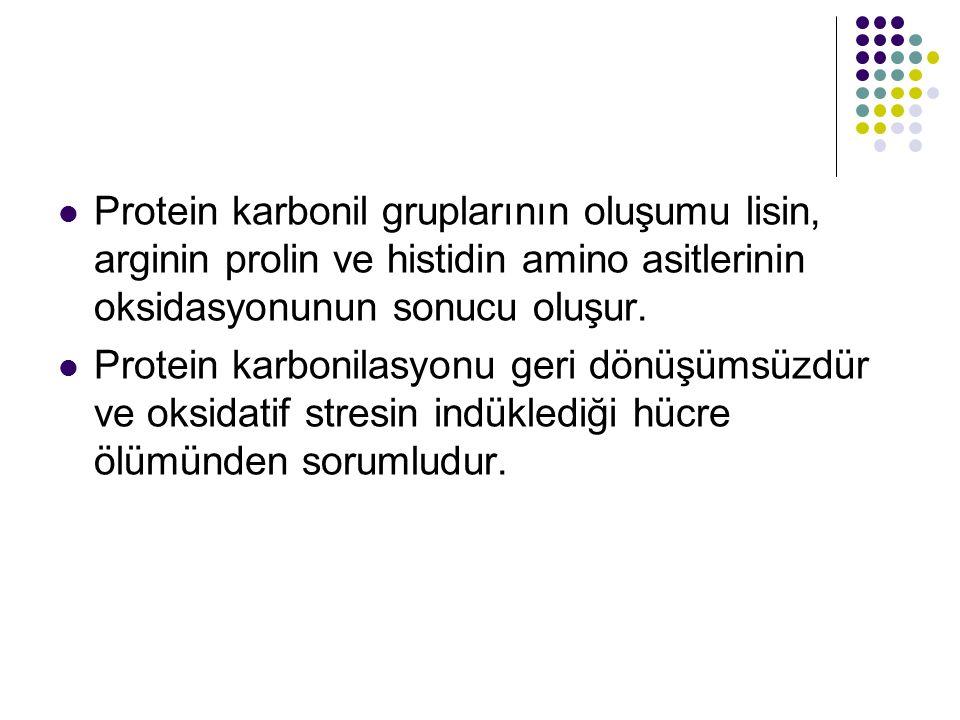 Protein karbonil gruplarının oluşumu lisin, arginin prolin ve histidin amino asitlerinin oksidasyonunun sonucu oluşur. Protein karbonilasyonu geri dön