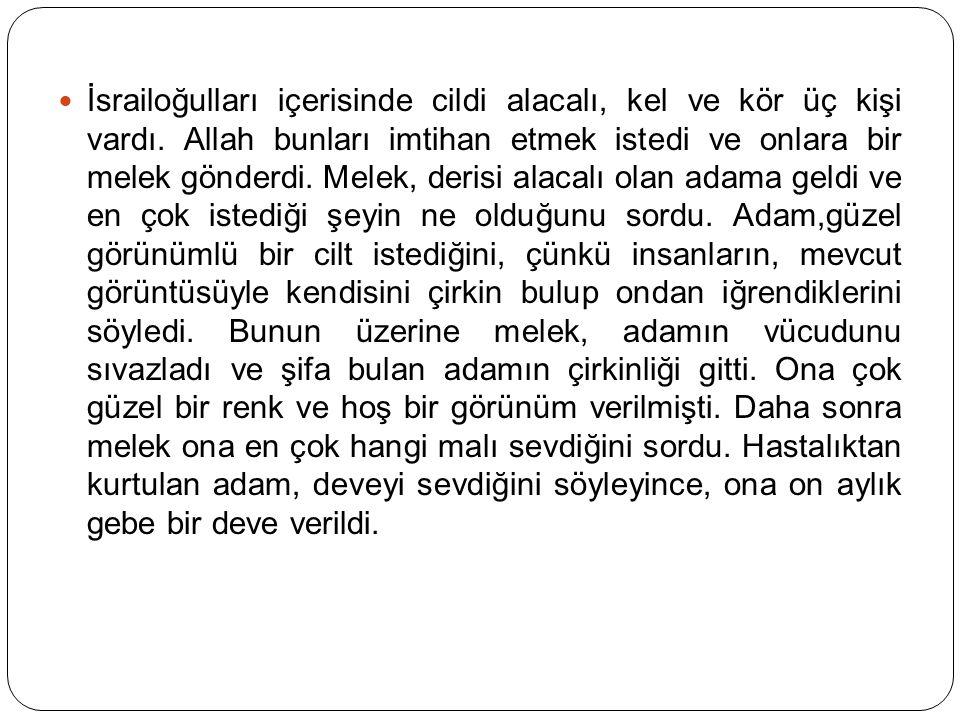 Bütün bunlara rağmen, Allah Teala: وَقَل۪يلٌ مِنْ عِبَادِيَ الشَّكُورُ Kullarımdan şükredenler pek azdır. buyurur.34 Bu durum, şükredenlerin bahtiyarlığını, şükretmeyenlerin talihsizliğini gösterir.