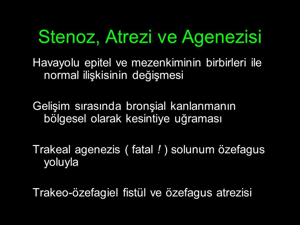 Stenoz, Atrezi ve Agenezisi Havayolu epitel ve mezenkiminin birbirleri ile normal ilişkisinin değişmesi Gelişim sırasında bronşial kanlanmanın bölgesel olarak kesintiye uğraması Trakeal agenezis ( fatal .
