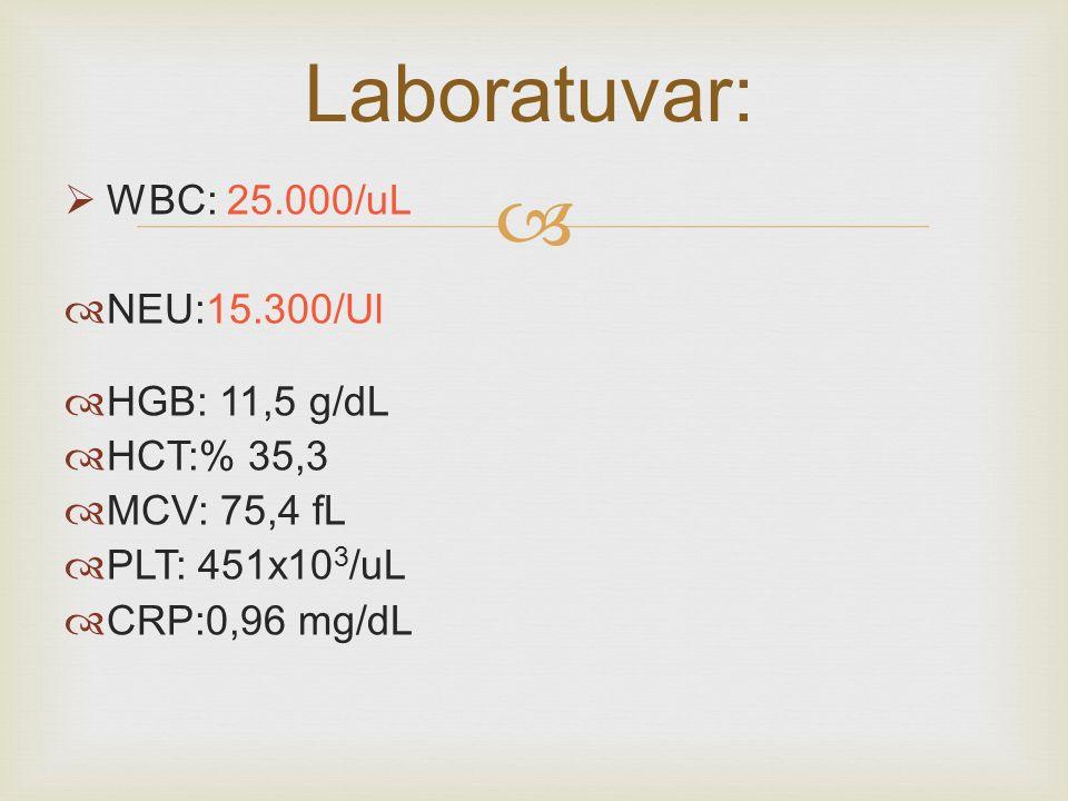   WBC: 25.000/uL  NEU:15.300/Ul  HGB: 11,5 g/dL  HCT:% 35,3  MCV: 75,4 fL  PLT: 451x10 3 /uL  CRP:0,96 mg/dL Laboratuvar: