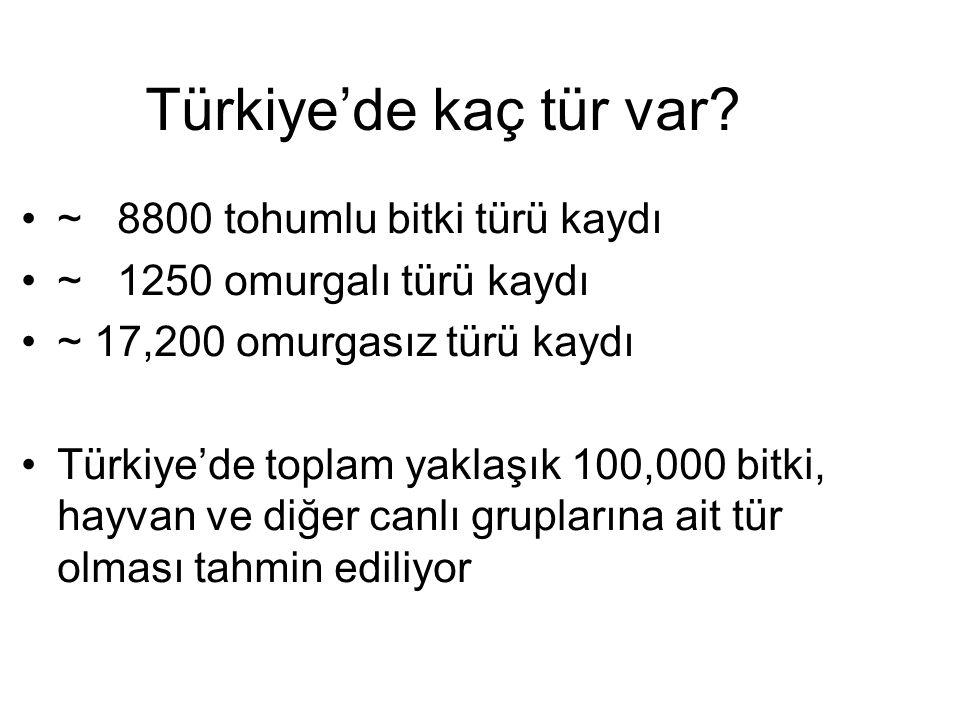 Türkiye'de kaç tür var? ~ 8800 tohumlu bitki türü kaydı ~ 1250 omurgalı türü kaydı ~ 17,200 omurgasız türü kaydı Türkiye'de toplam yaklaşık 100,000 bi