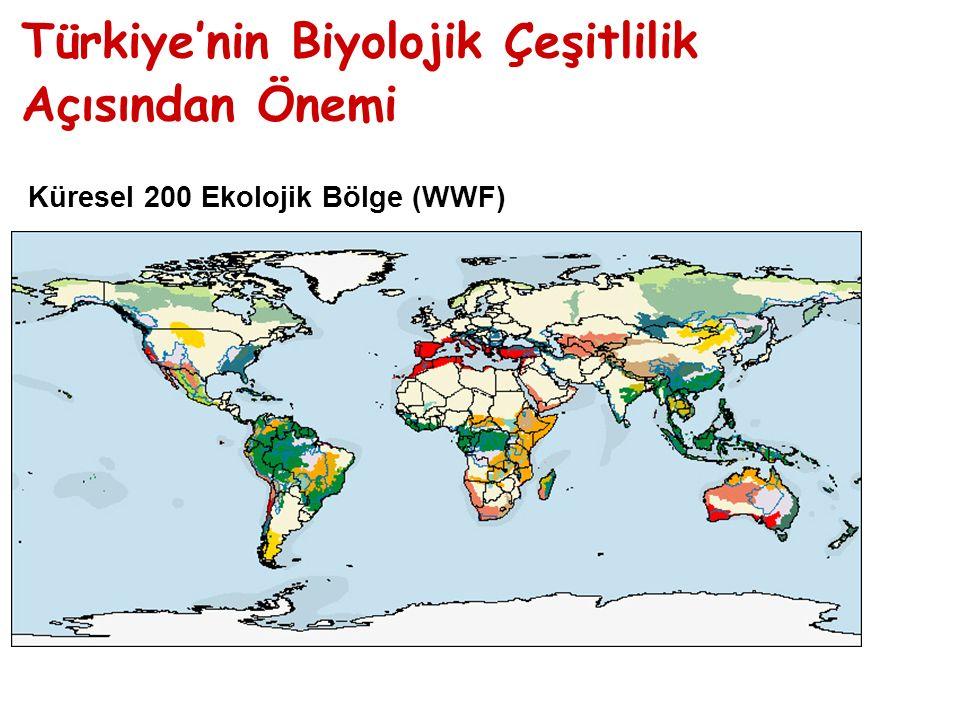 Küresel 200 Ekolojik Bölge (WWF) Türkiye'nin Biyolojik Çeşitlilik Açısından Önemi