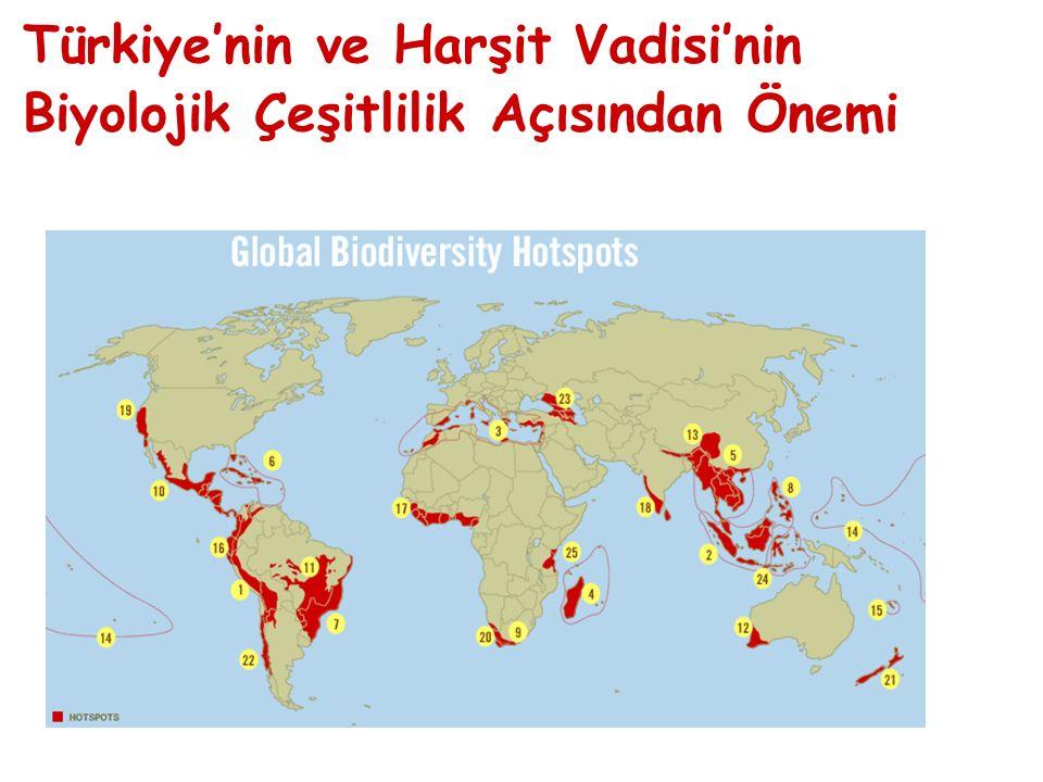 Türkiye'nin ve Harşit Vadisi'nin Biyolojik Çeşitlilik Açısından Önemi