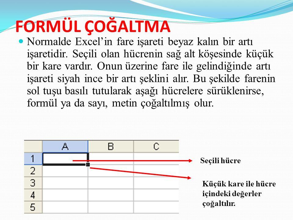 FORMÜL ÇOĞALTMA Normalde Excel'in fare işareti beyaz kalın bir artı işaretidir.