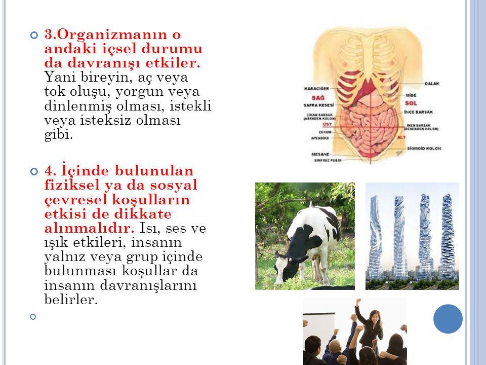 3.Organizmanın o andaki içsel durumu da davranışı etkiler. Yani bireyin, aç veya tok oluşu, yorgun veya dinlenmiş olması, istekli veya isteksiz olması