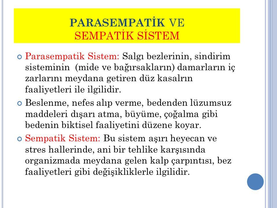 PARASEMPATİK VE SEMPATİK SİSTEM Parasempatik Sistem: Salgı bezlerinin, sindirim sisteminin (mide ve bağırsakların) damarların iç zarlarını meydana get
