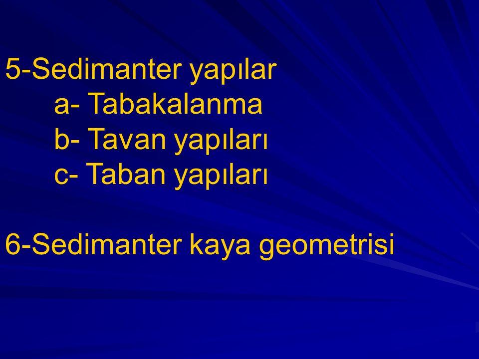 5-Sedimanter yapılar a- Tabakalanma b- Tavan yapıları c- Taban yapıları 6-Sedimanter kaya geometrisi