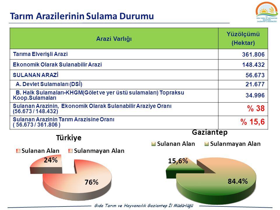 Tarım Arazilerinin Sulama Durumu Gıda Tarım ve Hayvancılık Gaziantep İl Müdürlüğü Arazi Varlığı Yüzölçümü (Hektar) Tarıma Elverişli Arazi 361.806 Ekonomik Olarak Sulanabilir Arazi 148.432 SULANAN ARAZİ 56.673 A.
