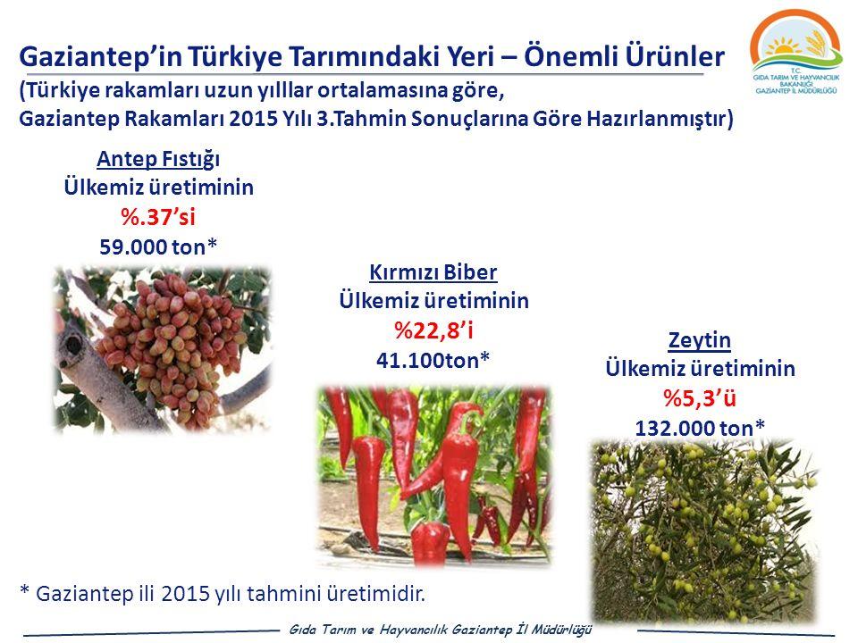 Gaziantep'in Türkiye Tarımındaki Yeri – Önemli Ürünler (Türkiye rakamları uzun yılllar ortalamasına göre, Gaziantep Rakamları 2015 Yılı 3.Tahmin Sonuçlarına Göre Hazırlanmıştır) Antep Fıstığı Ülkemiz üretiminin %.37'si 59.000 ton* Zeytin Ülkemiz üretiminin %5,3'ü 132.000 ton* Kırmızı Biber Ülkemiz üretiminin %22,8'i 41.100ton* Gıda Tarım ve Hayvancılık Gaziantep İl Müdürlüğü * Gaziantep ili 2015 yılı tahmini üretimidir.