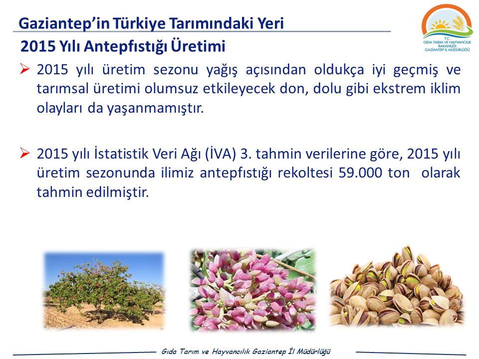 Gaziantep'in Türkiye Tarımındaki Yeri Gıda Tarım ve Hayvancılık Gaziantep İl Müdürlüğü 2015 Yılı Antepfıstığı Üretimi  2015 yılı üretim sezonu yağış açısından oldukça iyi geçmiş ve tarımsal üretimi olumsuz etkileyecek don, dolu gibi ekstrem iklim olayları da yaşanmamıştır.