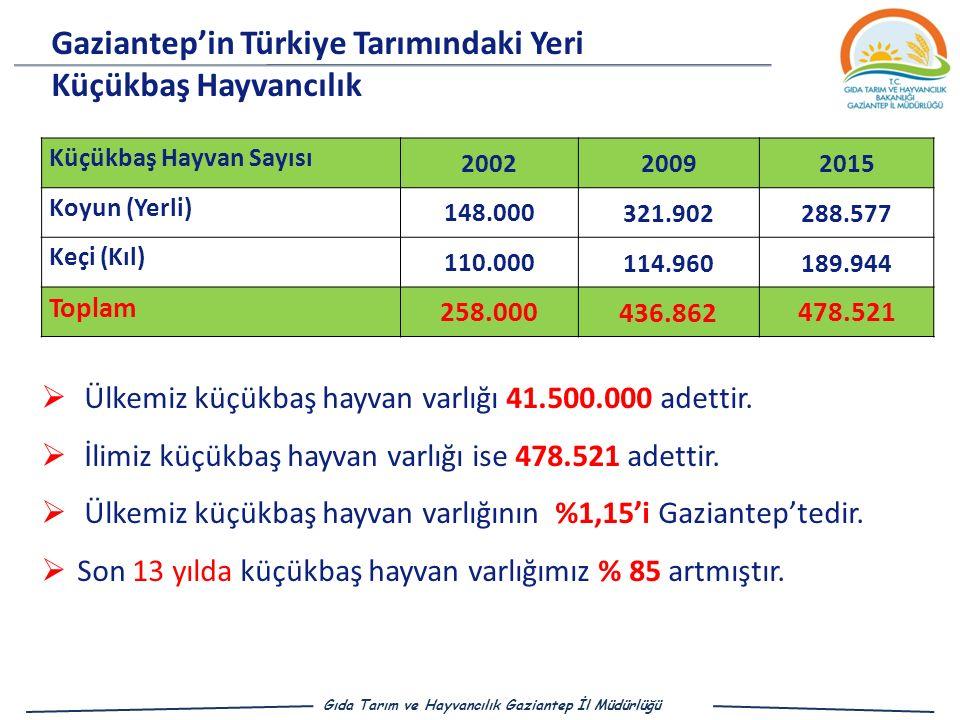 Gaziantep'in Türkiye Tarımındaki Yeri Küçükbaş Hayvancılık Küçükbaş Hayvan Sayısı 200220092015 Koyun (Yerli) 148.000 321.902 288.577 Keçi (Kıl) 110.000 114.960 189.944 Toplam 258.000 436.862 478.521  Ülkemiz küçükbaş hayvan varlığı 41.500.000 adettir.
