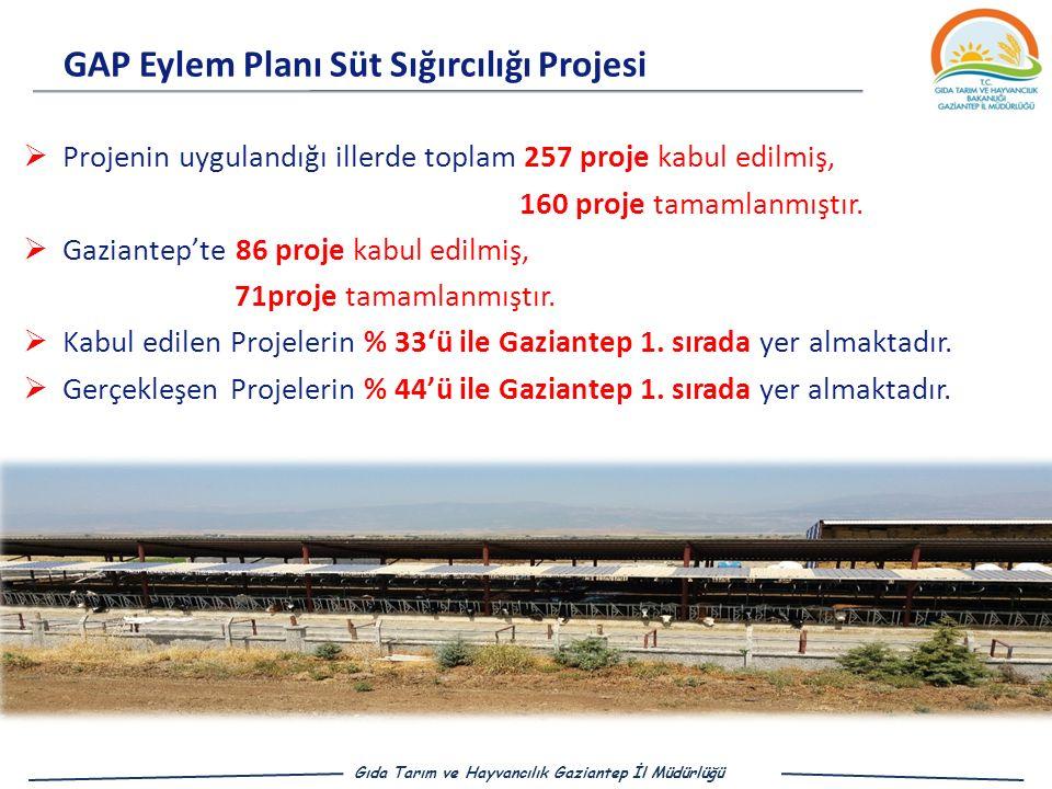  Projenin uygulandığı illerde toplam 257 proje kabul edilmiş, 160 proje tamamlanmıştır.
