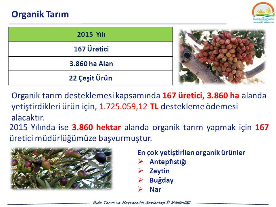 Organik Tarım 2015 Yılı 167 Üretici 3.860 ha Alan 22 Çeşit Ürün Organik tarım desteklemesi kapsamında 167 üretici, 3.860 ha alanda yetiştirdikleri ürün için, 1.725.059,12 TL destekleme ödemesi alacaktır.