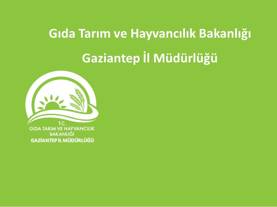 Gıda Tarım ve Hayvancılık Bakanlığı Gaziantep İl Müdürlüğü GAZİANTEP İL MÜDÜRLÜĞÜ