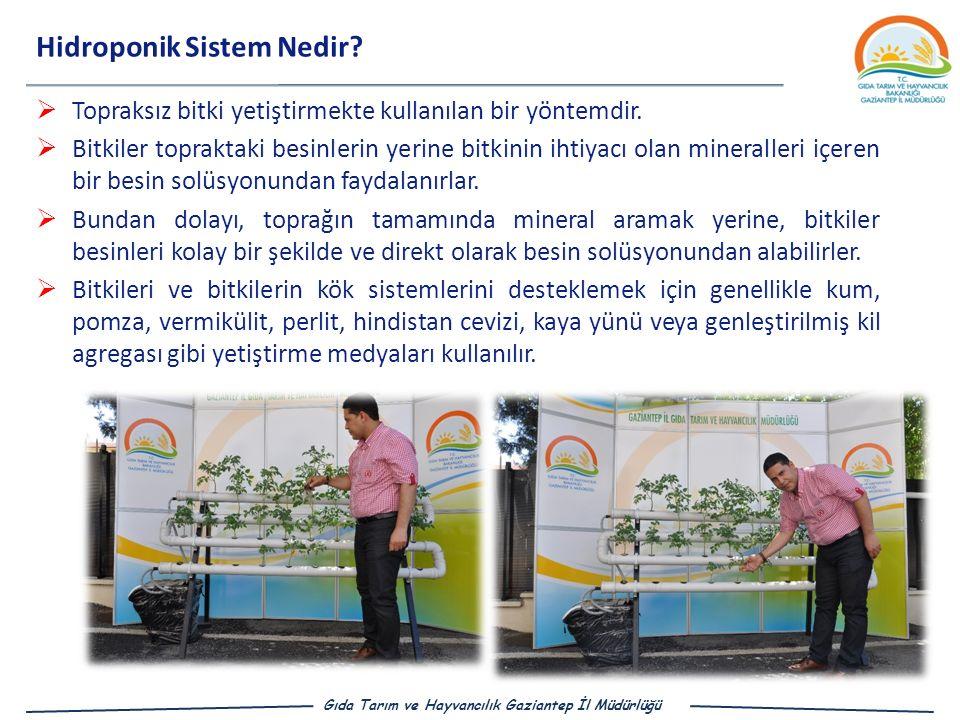 Gıda Tarım ve Hayvancılık Gaziantep İl Müdürlüğü Hidroponik Sistem Nedir.