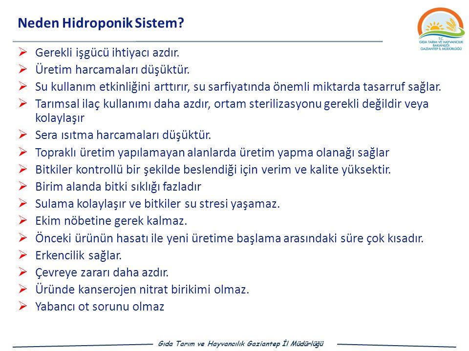 Gıda Tarım ve Hayvancılık Gaziantep İl Müdürlüğü Neden Hidroponik Sistem.