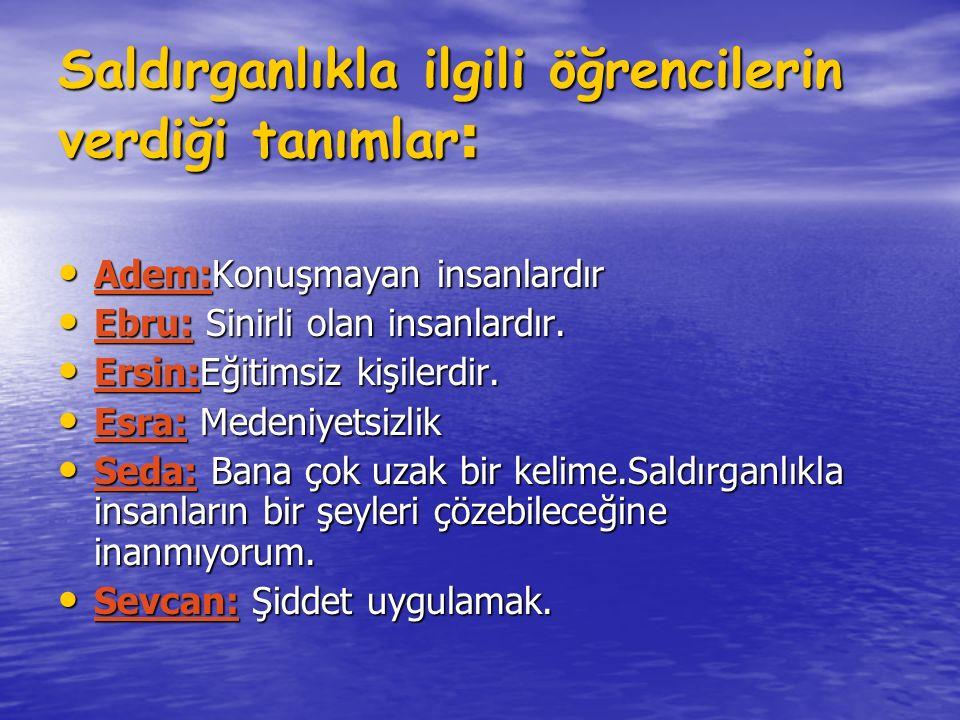 Saldırganlıkla ilgili öğrencilerin verdiği tanımlar : Adem:Konuşmayan insanlardır Adem:Konuşmayan insanlardır Ebru: Sinirli olan insanlardır. Ebru: Si