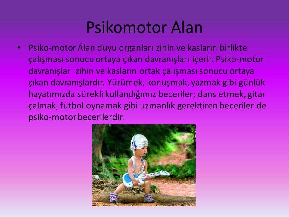 Psikomotor Alan Psiko-motor Alan duyu organları zihin ve kasların birlikte çalışması sonucu ortaya çıkan davranışları içerir. Psiko-motor davranışlar